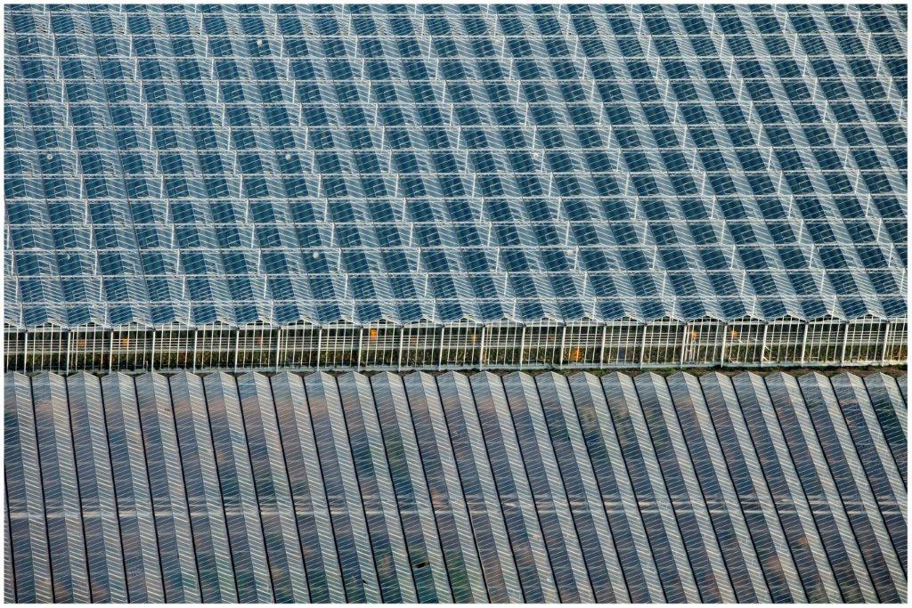 Onderzoek naar innovatie in de groenteteelt onder glas