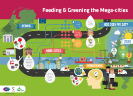 feedingandgreening-mega-cities