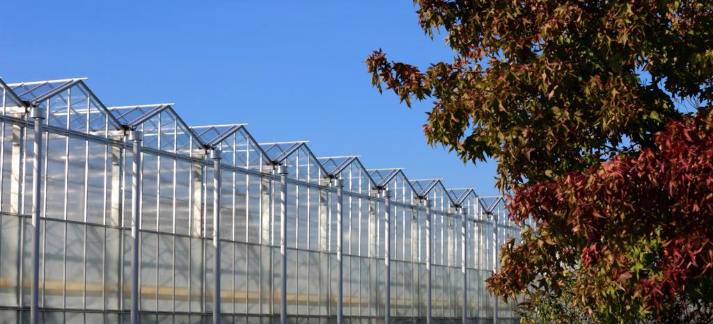 Herstructurering glas noodzaak voor klimaatneutraal