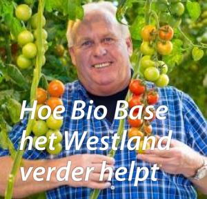 Leo van der Lans