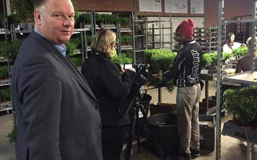 Statushouders zoeken werk in de tuinbouw