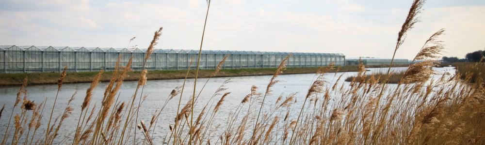 ACCEZ akkoord met project 'Kringlooptuinbouw: de waarde van water'