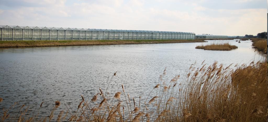 Online bijeenkomst over cross-sectorale samenwerking in water