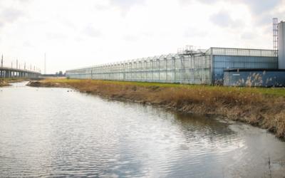 'Duurzaam waterbeheer door gezamenlijke Waterambitie Greenport'
