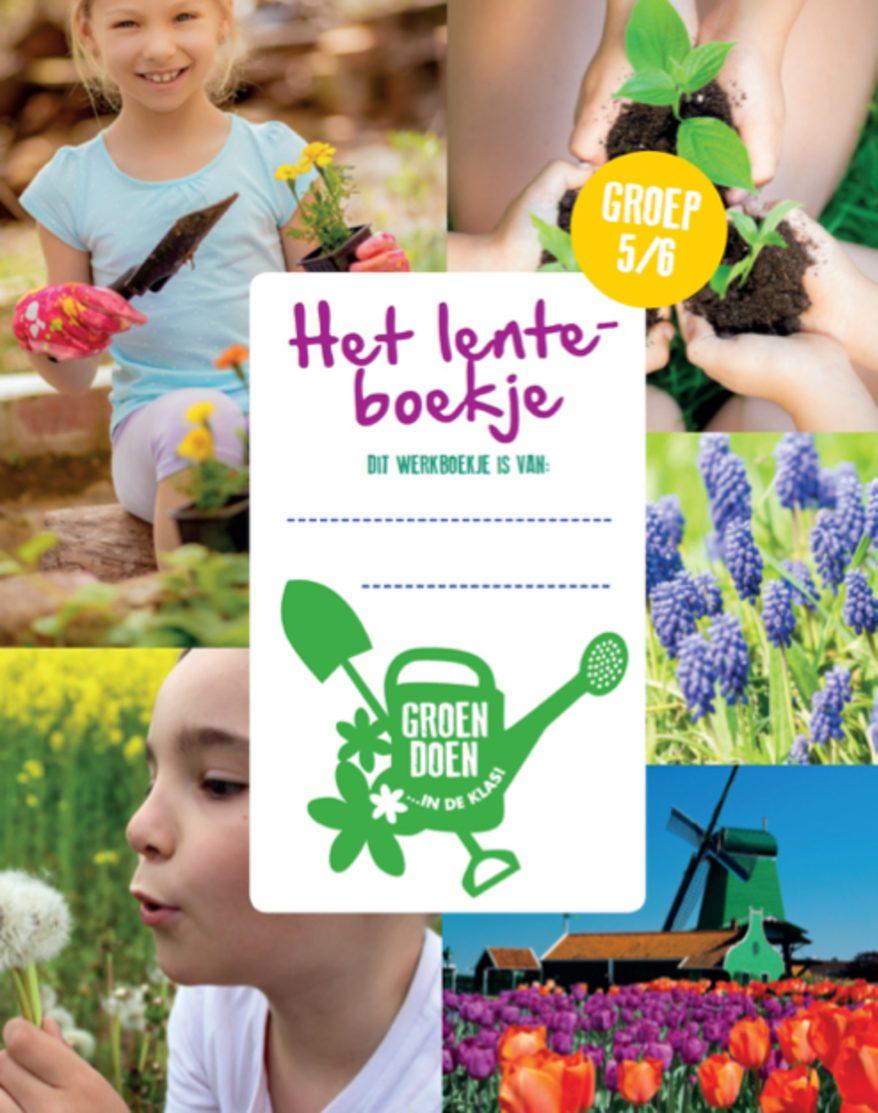Groen Doen in de Klas: aan de slag met bloemen en planten