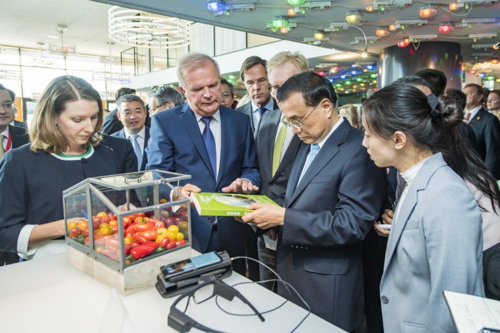 'Nederlandse tuinbouw kan China helpen met veilige en schone voedselproductie'