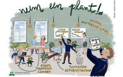 'Kosten voor aanschaf planten zijn in 1 jaar terugverdiend'