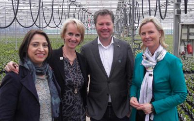 Europarlementariër Schreijer Pierik bezoekt tuinbouw
