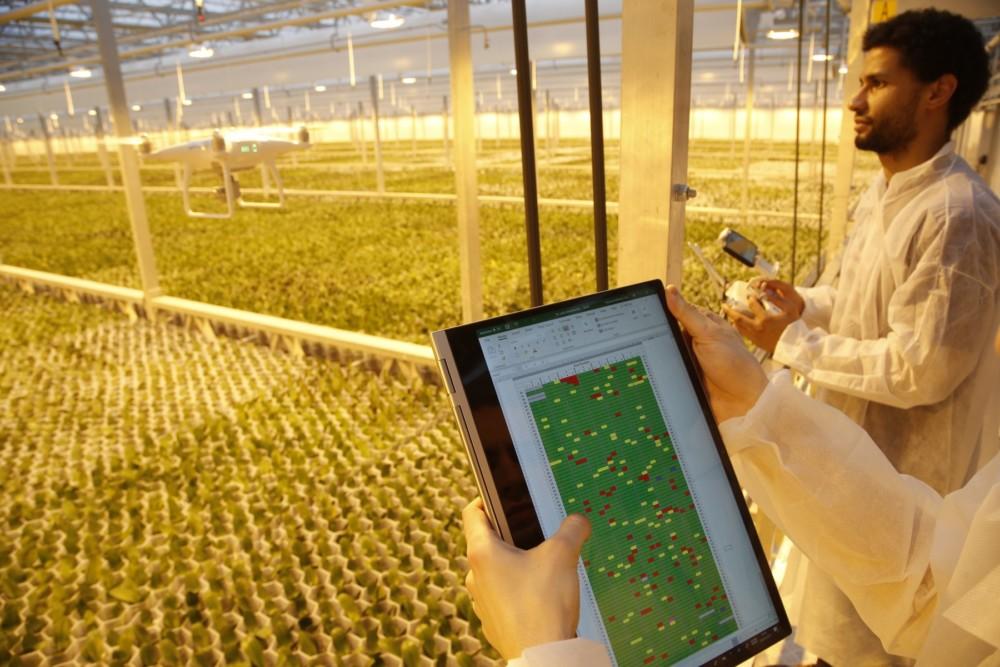 Slotsymposium HiPerGreen:Hoe kunnen we met drones gewasopbrengst in sierteelt verbeteren?