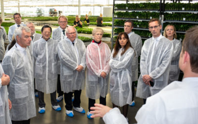 Embassies visit Greenport West-Holland