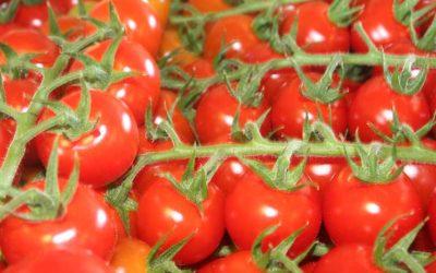 """""""Nederlands beleid voor gezonde voedselomgeving kan veel beter"""""""