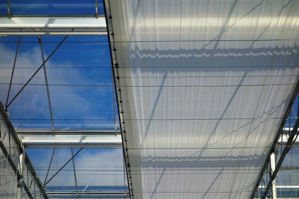 Voortzetting in vernieuwd EnergieAkkoord voor Greenport West-Holland