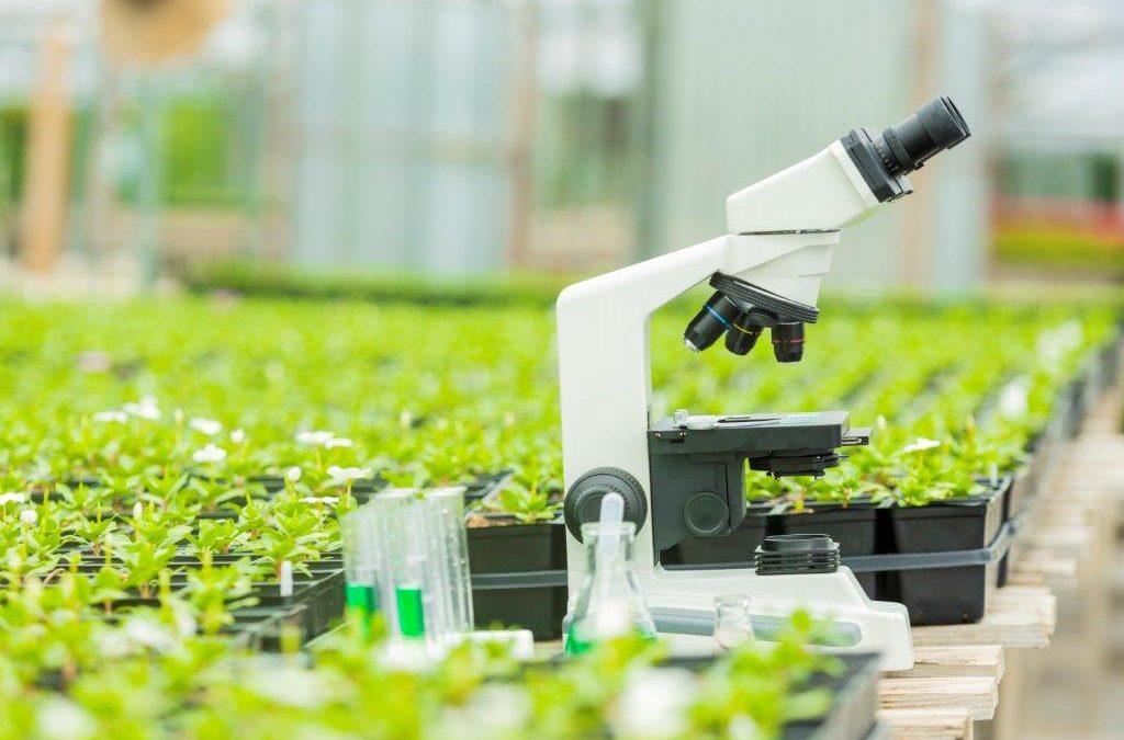 Slotevent BioBoost 2020 op 7 oktober: Naar een circulaire (glas)tuinbouwsector