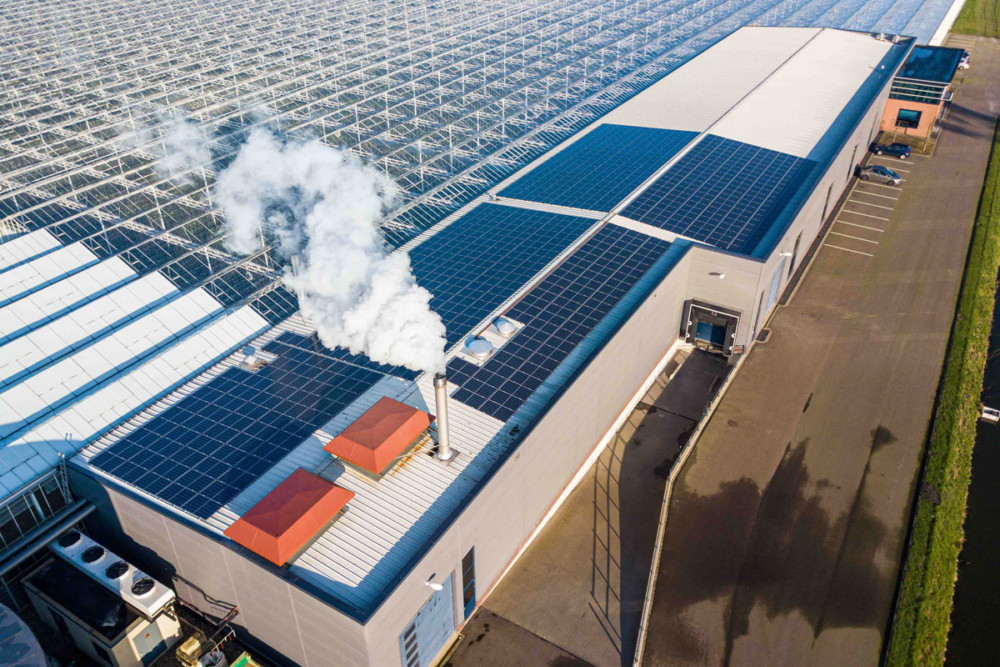 Zonnepanelen op dak paprikateler in recordtempo uitverkocht