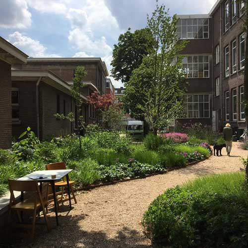 Eerste transdisciplinaire consortium in Nederland aan de slag met transitie voedselsysteem als geheel