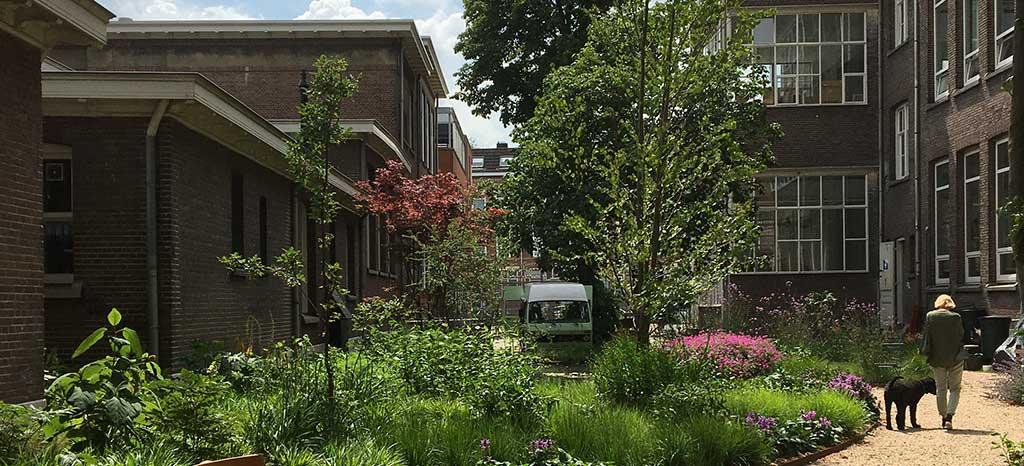 Greenport West-Holland werkt aan ontwikkeling Circulaire Stad