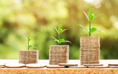 Tuinbouw-projecten ontvangen MIT-subsidie