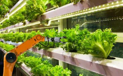 Regio geeft nieuwe impuls aan innovatie tuinbouw met Innovatieprogramma AgriTech