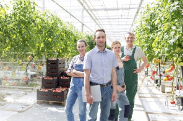 Training Verandermanagement in de (glas)tuinbouw tijdelijk gratis bij Inholland Academy
