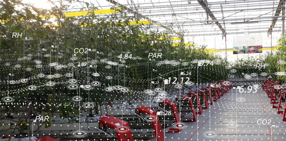 Webinar '5G in de tuinbouw: de volgende stap naar de autonome kas?'