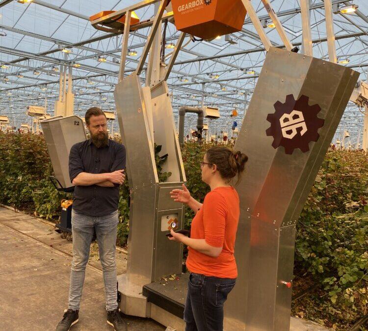 Consortium versnelt ontwikkeling en toepassing van robots in glastuinbouw